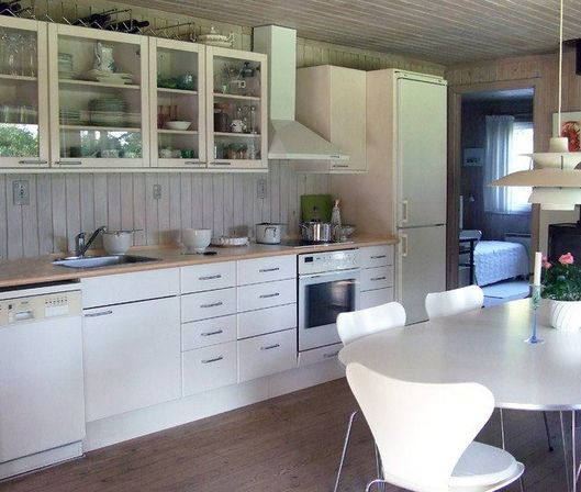 Kitchens with white appliances, 14 photo